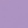 Lavender cotton