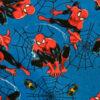 Spiderman licensed print